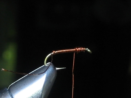 Pheasant Tail(Sawyer Nymph)1.jpg